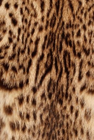 furcoat lynxcoat